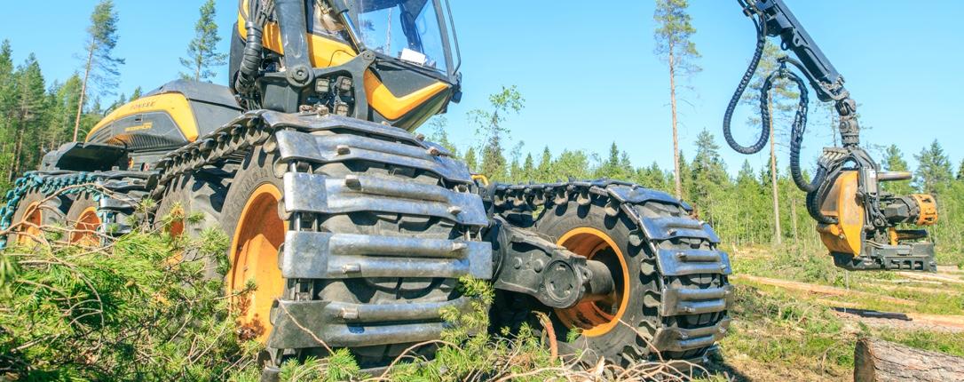 Puuta korjataan koneellisesti nykyaikaisella harvesterilla eli hakkuukoneella